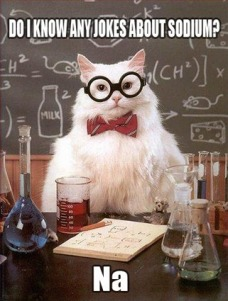 chemistry%20cat